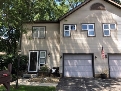 1201 Surrey Point Drive SE, Howland, OH 44484 - #: 4101636