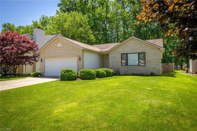 36682 Valley Ridge Drive, Eastlake, OH 44095 - #: 4101689
