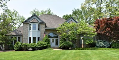20 Stonehedge Way, Amherst, OH 44001 - #: 4101745