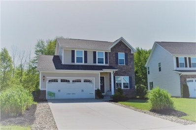 825 Hilliary Lane, Aurora, OH 44202 - #: 4101824