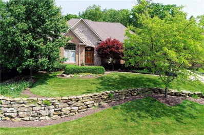 6824 Kyle Ridge Pointe, Canfield, OH 44406 - #: 4101904