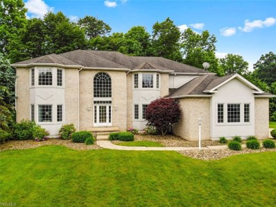 8526 Twin Oaks Court, Poland, OH 44514 - #: 4101933