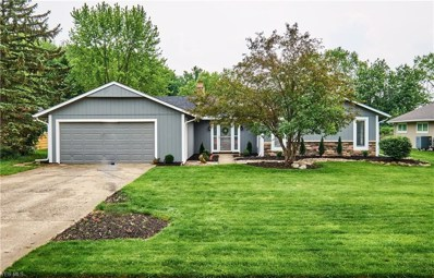 32927 Meadow Creek Oval, North Ridgeville, OH 44039 - #: 4101947
