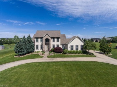 9175 Sharp Road, Olmsted Township, OH 44138 - #: 4101948