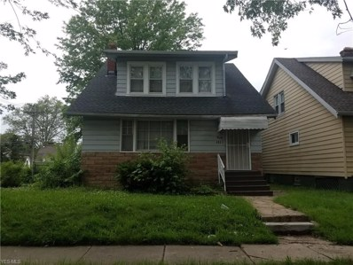 4880 E 85th Street, Garfield Heights, OH 44125 - #: 4101972