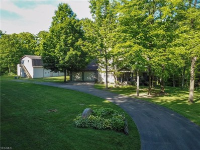 3012 W Middletown Road, Columbiana, OH 44408 - #: 4102047