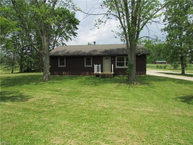 6901 Spencer Lake Road, Medina, OH 44256 - #: 4102224