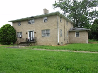 17658 Indian Hollow Road, Grafton, OH 44044 - #: 4102383