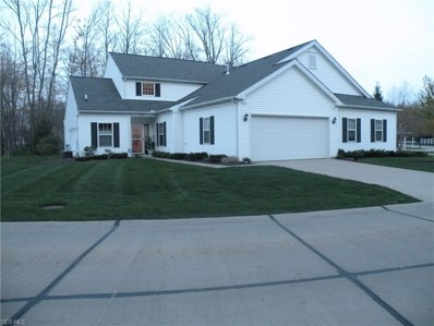 10527 Crossings Drive, Reminderville, OH 44202 - #: 4102410