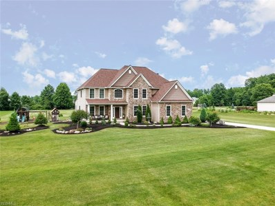 33819 Willow Creek Court, Columbia Station, OH 44028 - #: 4102504