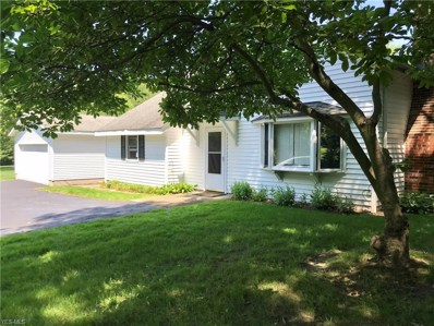 16471 Haskins Road, Chagrin Falls, OH 44023 - #: 4103150