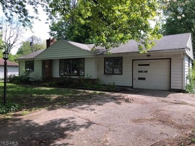 156 Bowhall Road, Painesville Township, OH 44077 - #: 4103329