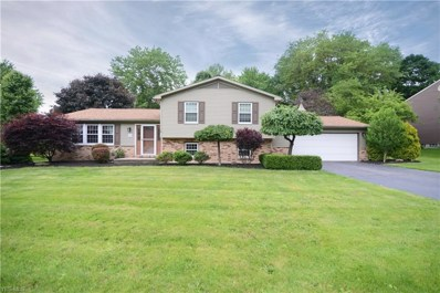 8441 Carriage Hill Drive NE, Howland, OH 44484 - #: 4103395
