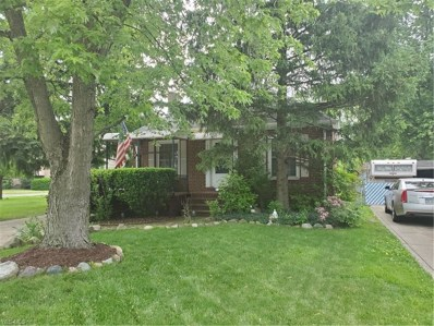 4369 Tiedeman Road, Cleveland, OH 44144 - #: 4103845
