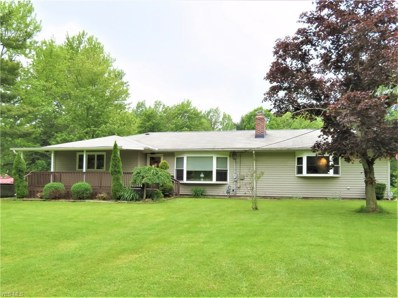 6733 Austinburg Road, Ashtabula, OH 44004 - #: 4103921