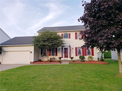 3413 Starwick Drive, Canfield, OH 44406 - #: 4104160