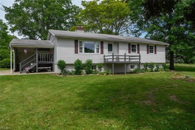 7557 State Route 44, Ravenna, OH 44266 - #: 4104333