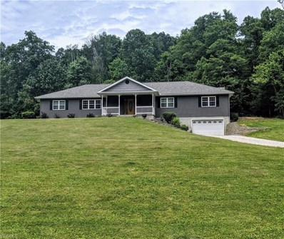 20431 Township Road 282, Coshocton, OH 43812 - #: 4104336