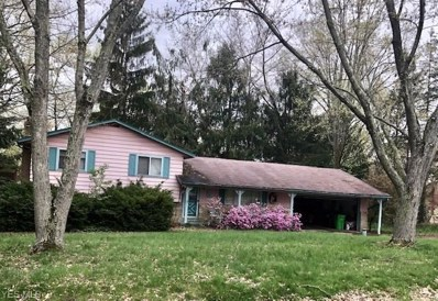4232 Slaughter Road, Uniontown, OH 44685 - #: 4104826
