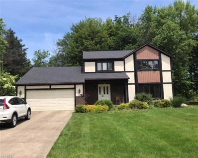6051 Castlehill Drive, Highland Heights, OH 44143 - #: 4104864