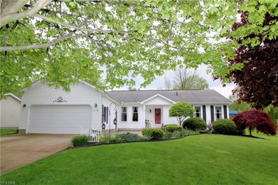 376 Plymouth Place, Salem, OH 44460 - #: 4104992
