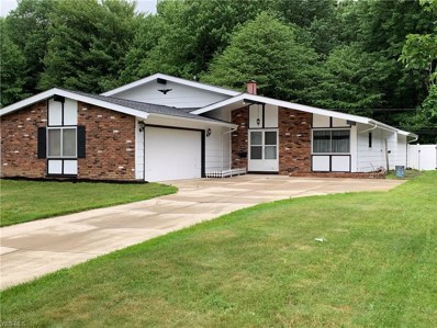 23804 Amesbury Drive, North Olmsted, OH 44070 - #: 4105170