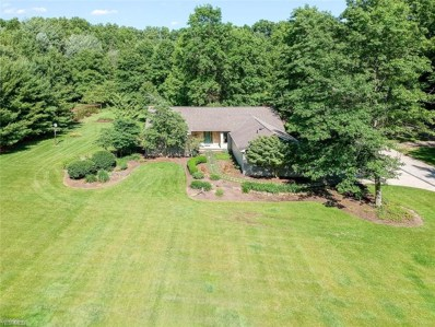 12755 S Durkee Road, Grafton, OH 44044 - #: 4105200