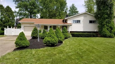 4783 5th Avenue, Youngstown, OH 44505 - #: 4105210