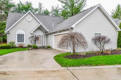 214 Lake Pointe Drive, Akron, OH 44333 - #: 4105258