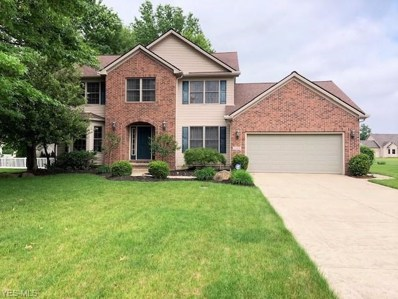 1025 Wicklow Court, Grafton, OH 44044 - #: 4105346