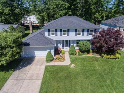 16023 Squirrel Hollow Lane, Strongsville, OH 44136 - #: 4105384