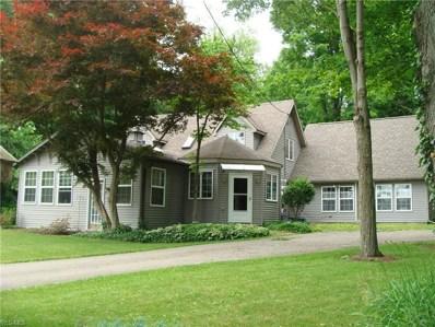 1173 Ridge Road, Salem, OH 44460 - #: 4105862