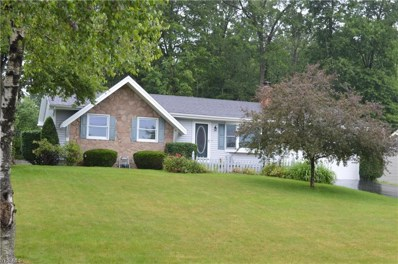 3392 Johnson Farm Drive, Canfield, OH 44406 - #: 4105951