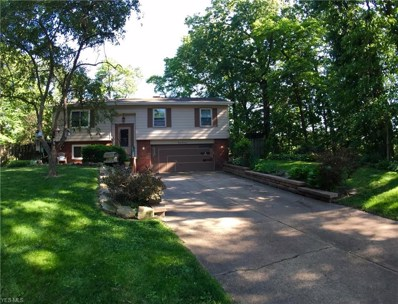 2017 Chestnut Hill Drive, Youngstown, OH 44511 - #: 4105983
