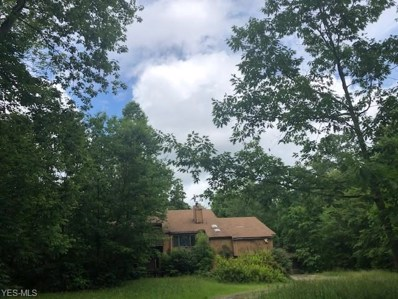 17176 Wood Acre Trail, Chagrin Falls, OH 44023 - #: 4106026
