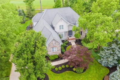 7310 Mountain Quail Place, Concord, OH 44077 - #: 4106082