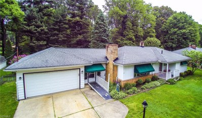 123 Timberlane Drive, Northfield Center, OH 44067 - #: 4106149
