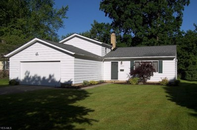 6552 Forest Glen Avenue, Solon, OH 44139 - #: 4106308