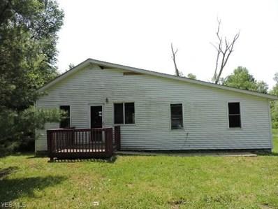 2968 E Water Street, Rock Creek, OH 44084 - #: 4106500