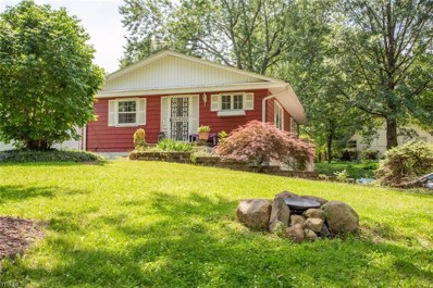 483 Rock Creek Run, Amherst, OH 44001 - #: 4106538