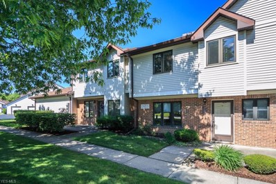 7160 Village Drive, Mentor, OH 44060 - #: 4106561
