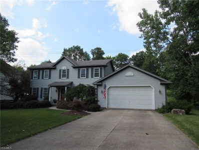 1177 Deepwood Drive, Macedonia, OH 44056 - #: 4106746