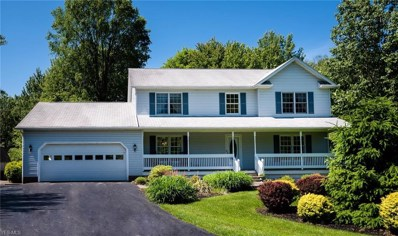 17800 Settlers Trail, Chagrin Falls, OH 44023 - #: 4106846