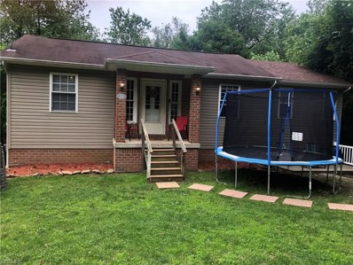 542 Henry Avenue, East Liverpool, OH 43920 - #: 4106888