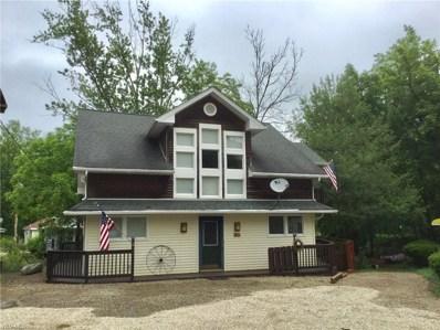 118 Shady Slope, Chippewa Lake, OH 44215 - #: 4107051