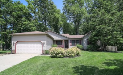1222 Fanwood Court, Painesville Township, OH 44077 - #: 4107245