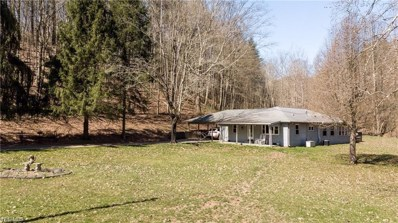 1253 Isaac Fork Road, Waverly, WV 26184 - #: 4107489