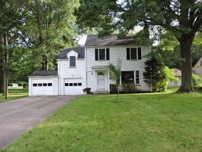 732 Golfview Avenue, Youngstown, OH 44512 - #: 4107879