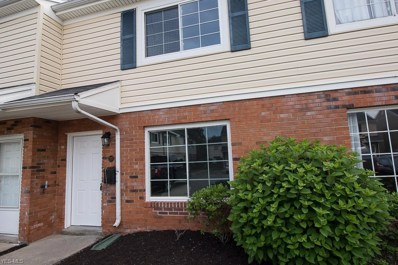 217 Pepper Tree Lane, Painesville Township, OH 44077 - #: 4108043
