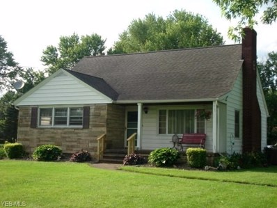 9863 E Center Street, Windham, OH 44288 - #: 4108802